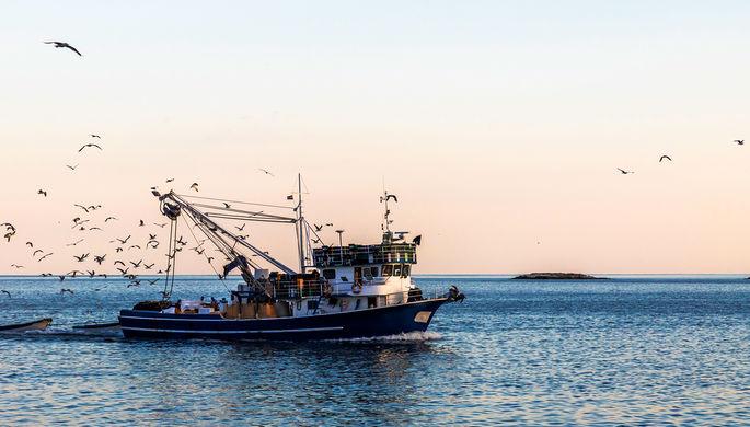 Спасение моряков: у берегов Эстонии затонул российский траулер