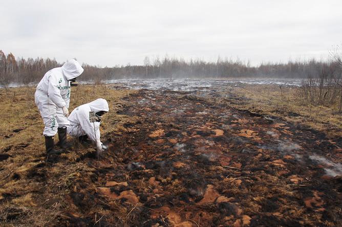 Торфяные пожары в Брянской области