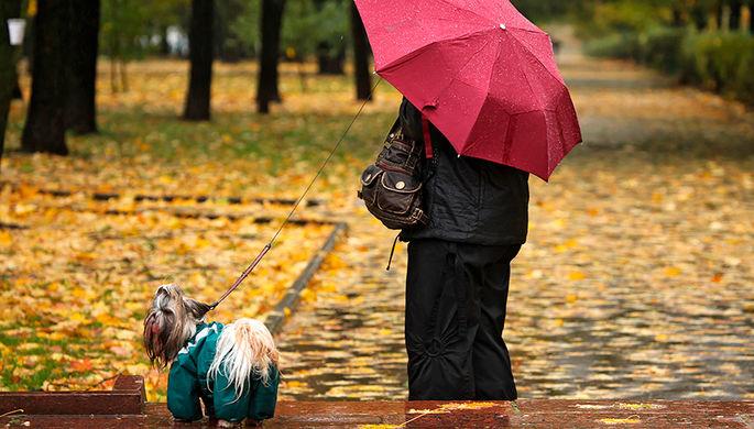 В Москве в субботу ожидается до +12°С