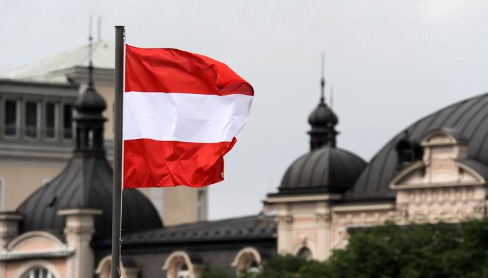 «Не рубите сук»: в Австрии призвали подумать, прежде чем «наказывать» Россию