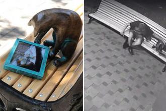 Один из котов-геймеров и кадр с моментом кражи памятника в Одессе, коллаж «Газеты.Ru»
