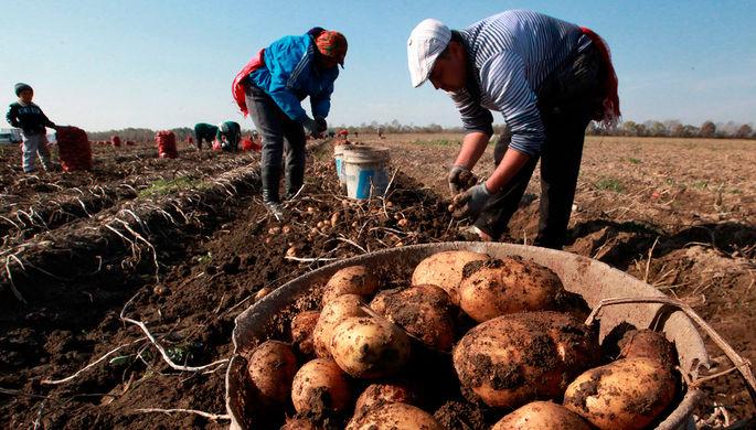 Производительность труда в России: задача на века