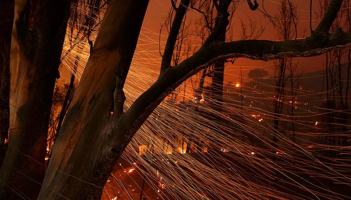 Лесной пожар в городе Санта-Пола, Калифорния, США, 6 декабря 2017 года