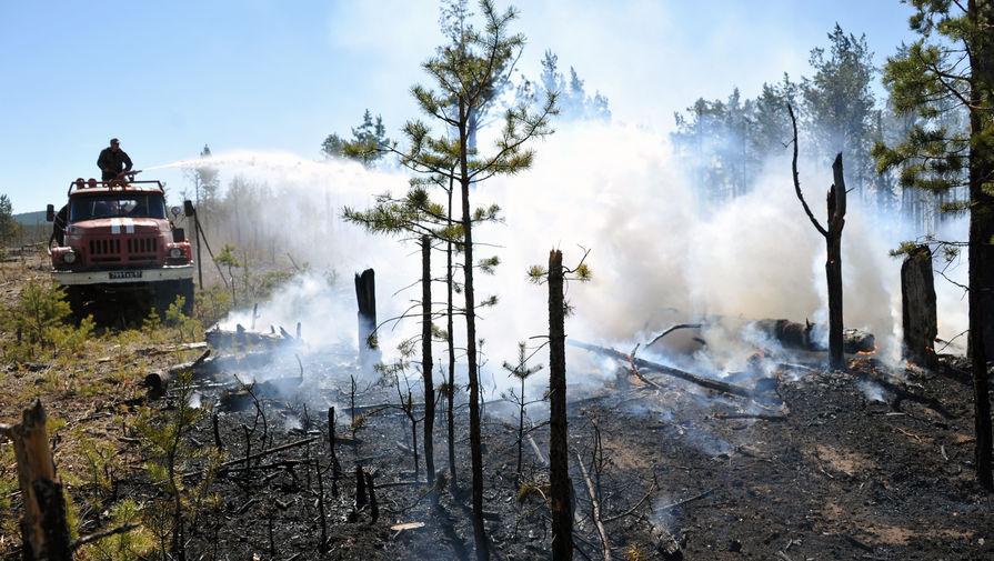 Эксперт ВОЗ рассказал о влиянии лесных пожаров на здоровье