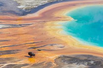 Йеллоустонский национальный парк, который расположен на территории штатов Вайоминг, Монтана и Айдахо