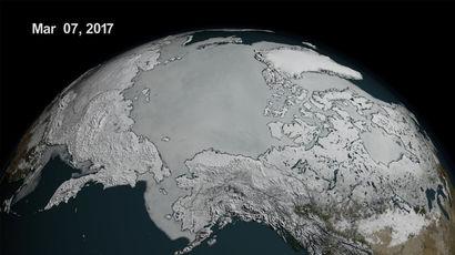 Профессор Пол Беркман о таянии льдов Арктики и Антарктики