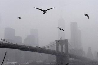 Нью-Йорк и Бостон находятся в зоне наибольшего риска. Синоптики предупреждают, что нынешний зимний шторм может войти в историю