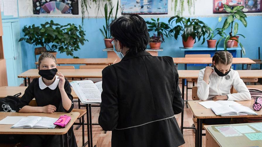 В профсоюзе студентов и в вузах поддержали замену школьных учителей студентами