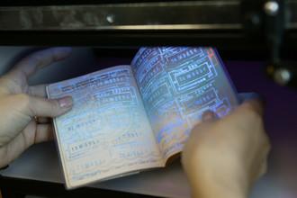 На время чемпионата мира — 2018 по футболу в России могут отменить визы для зарубежных болельщиков