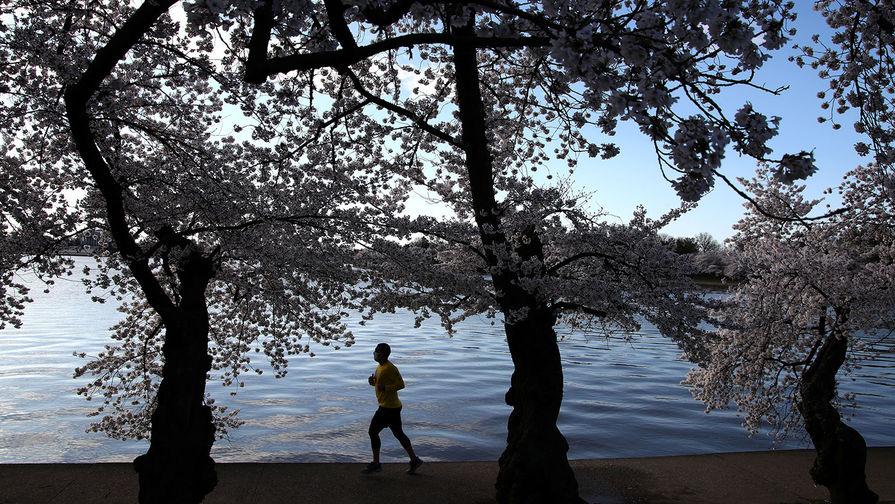 Мужчина на пробежке в Вашингтоне, март 2021 года