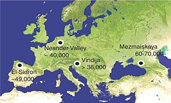 Карта, демонстрирующая, откуда были взяты образцы неандертальцев для исследований // Science/AAAS