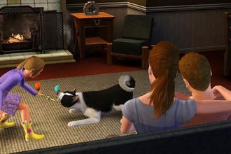 Скришнот игры «The Sims 3: питомцы»