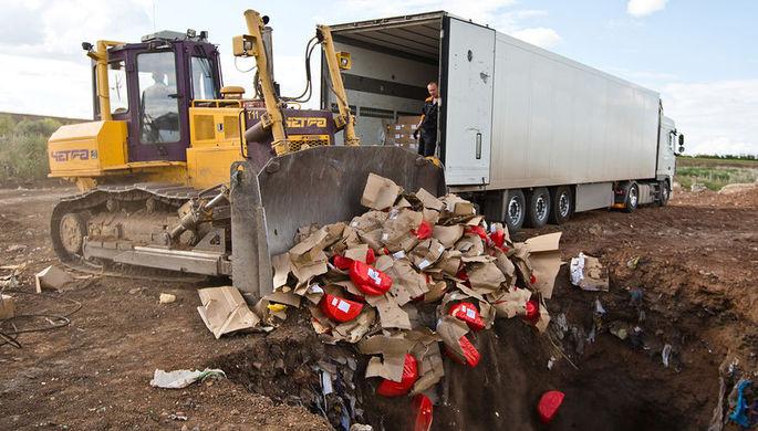 Уничтожение импортного сыра на полигоне у села Подгородняя Покровка в Оренбургской области, 2015 год