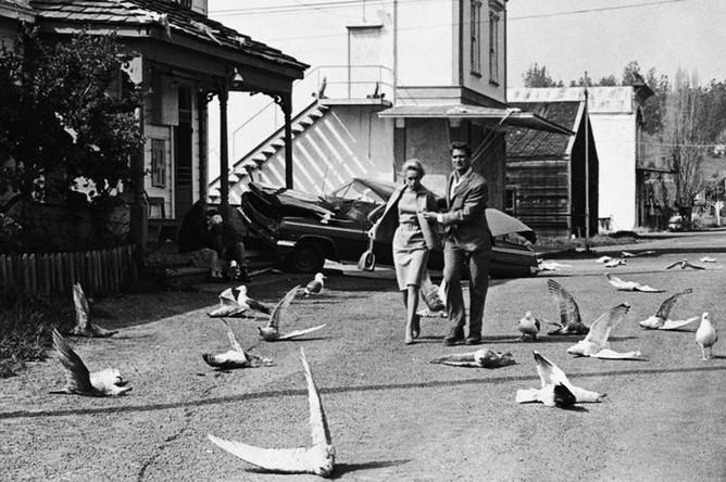 Кадр из фильма «Птицы» (1963)