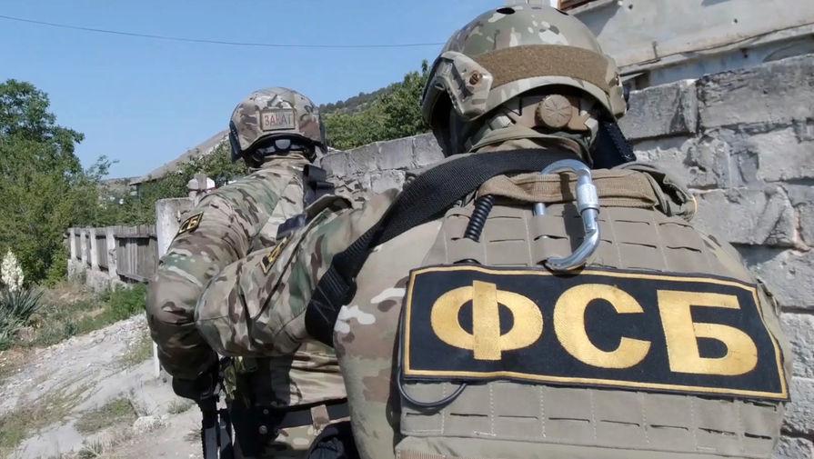 ФСБ заявила о связи диверсии на газопроводе в Крыму со спецслужбами Украины