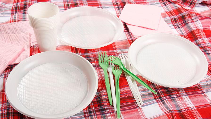 В России предложили отказаться от одноразовой посуды и пластиковых контейнеров