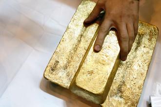 Слитки золота, произведенного на Олимпиадинском ГОК компании «Полюс золото»