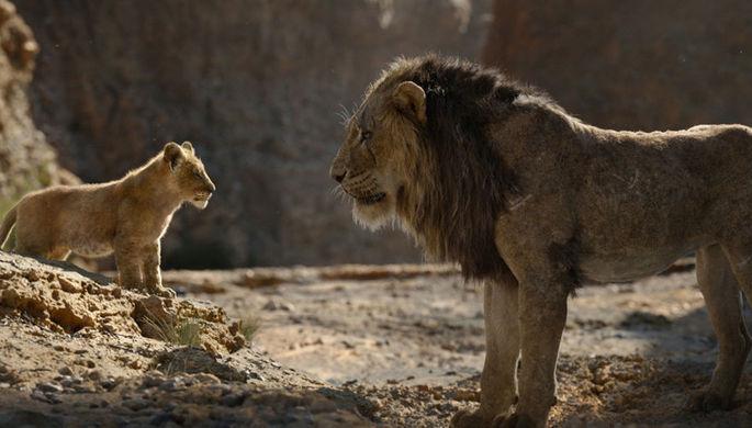 Кадр из фильма «Король Лев» (2019)