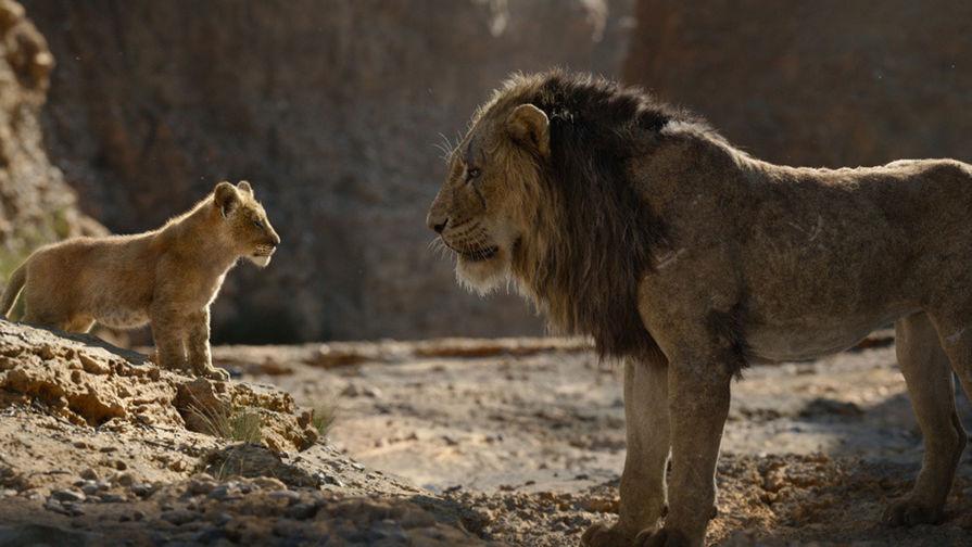 В заповеднике нашли Шрама из «Короля льва»