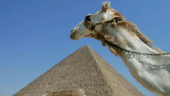 Рано загорать: почему чартеры в Египет отложат