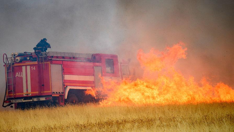 В МЧС назвали число поселений, подверженных угрозе лесных пожаров