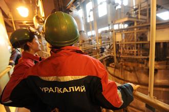 «Онэксим» Михаила Прохорова еще до конца месяца может договориться о покупке 33% «Уралкалия»
