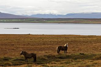 Северная Исландия