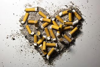Заболевания сердечно-сосудистой системы не появляются сами собой — они вызываются поведением человека, его привычками. Например, курение повышает риск смерти от ССЗ сразу на 17% из-за вредных веществ, содержащихся в дыме, и понижения поступления кислорода в кровь. На круглосуточной бесплатной «горячей линии» Минздрава России 8-800-200-0-200 можно получить консультационную помощь в отказе от употребления табака и информацию о здоровом образе жизни