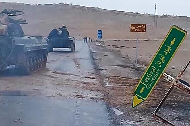 Бронетехника сирийской армии на подступах к Пальмире, 1 марта 2017 года
