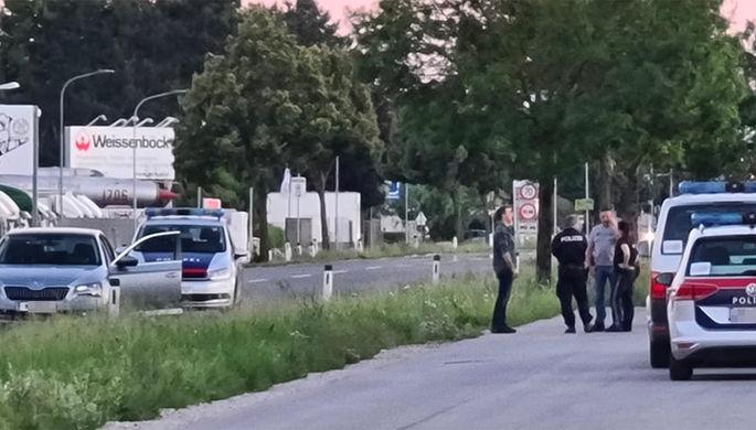 «Жертва спецслужб»: Кадыров назвал виновных в убийстве блогера