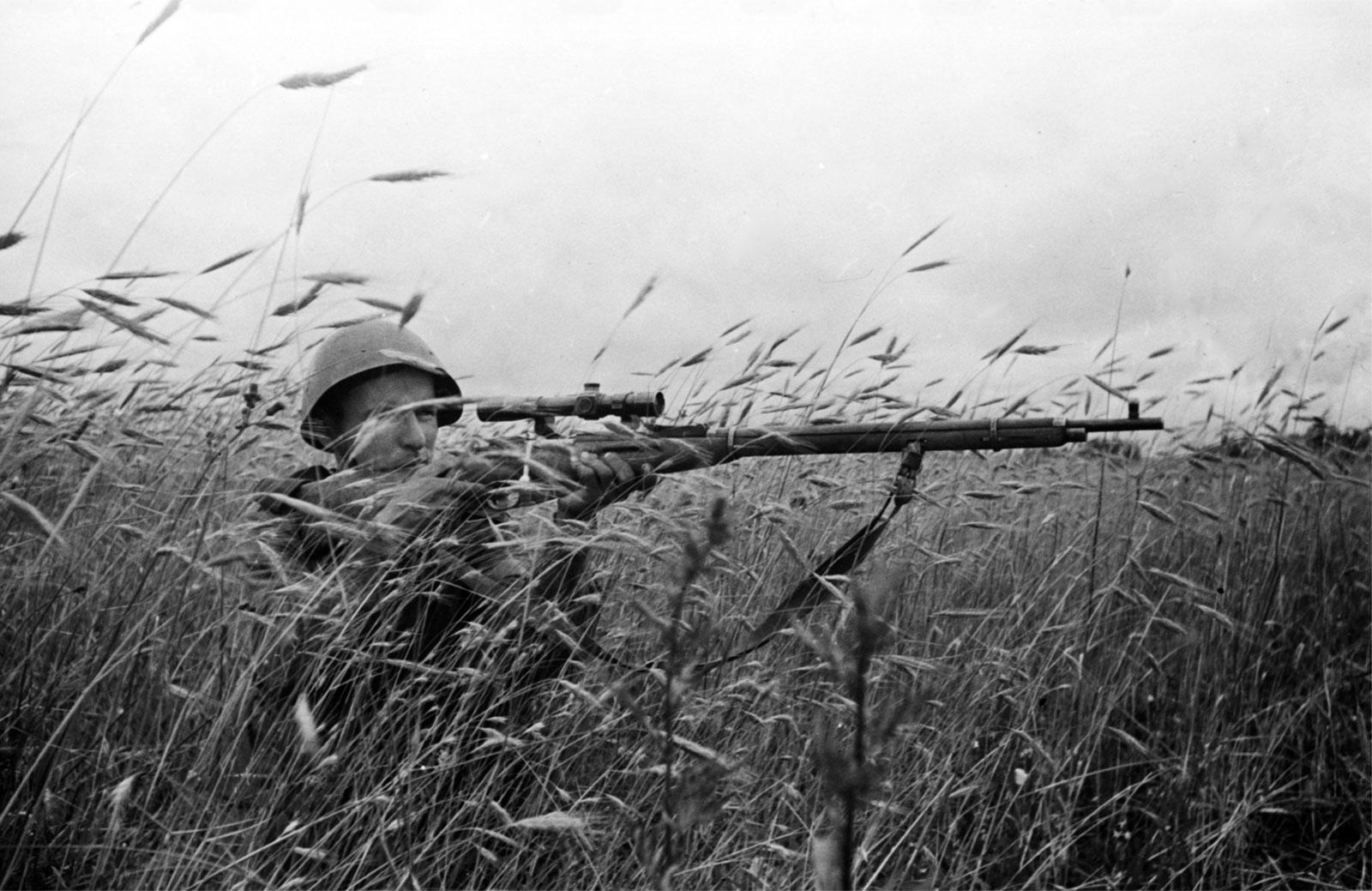 Министерство обороны опубликовало редкие снимки великой отеч.