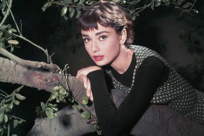 Фото со съемок фильма «Сабрина» (Sabrina), 1954 год