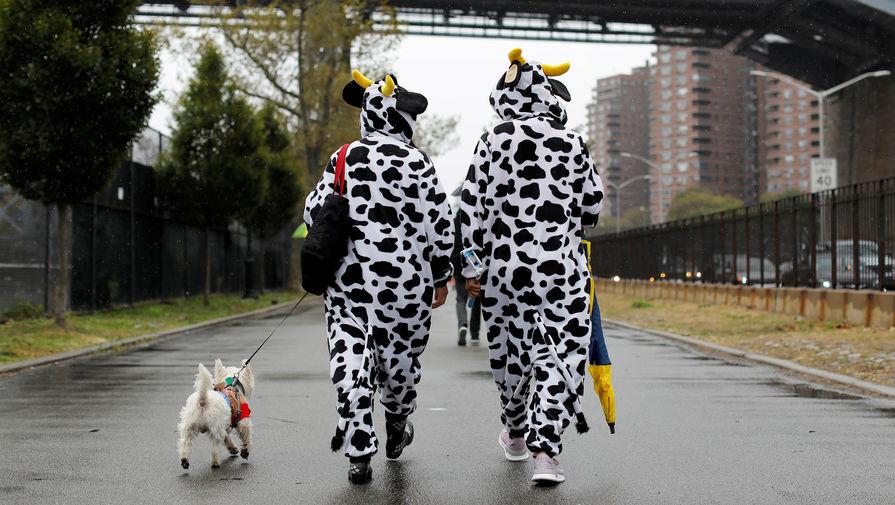 Во время ежегодного парада собак в честь предстоящего Хэллоуина, Нью-Йорк, 20 октября 2019 года
