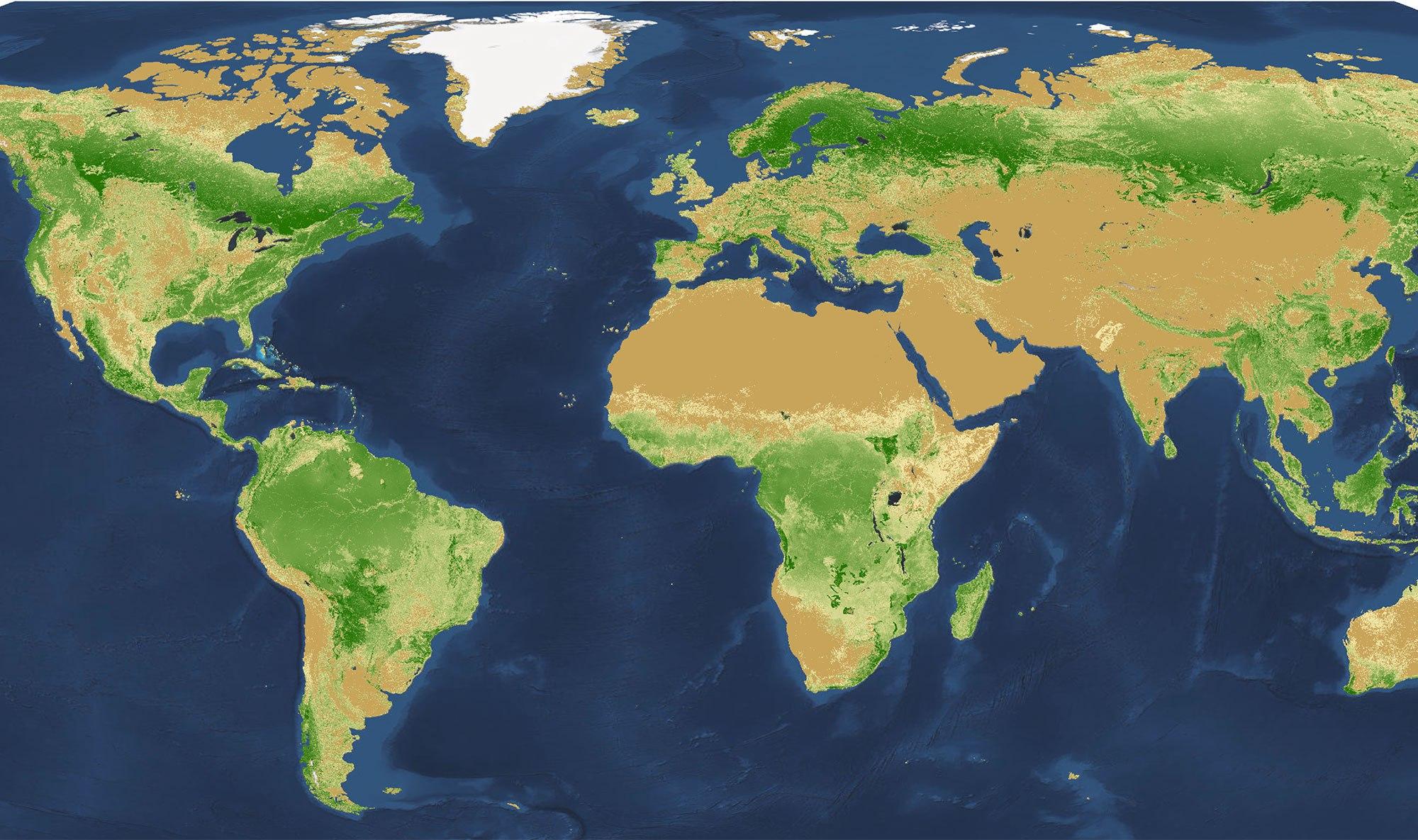 Мировая карта плотности лесов