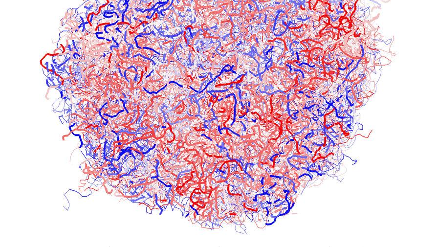 Разработана компьютерная модель формирования частицы микрогеля