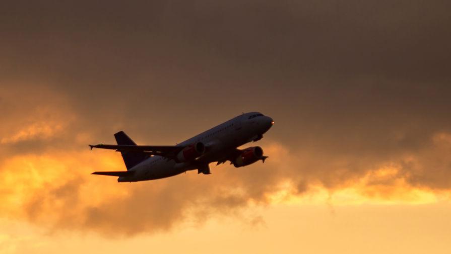 В томском аэропорту пьяного немца сняли с рейса