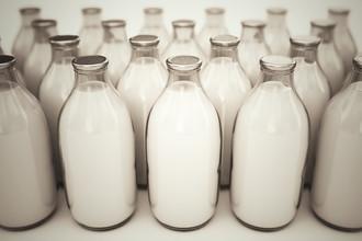 За последние полгода доля фальсификата на молочном рынке только увеличивается