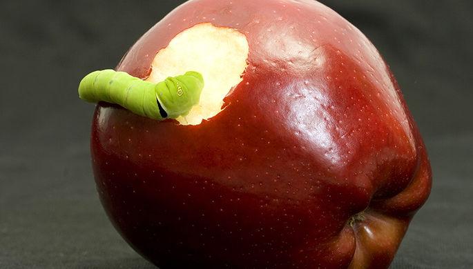 Apple атакуют вирусы
