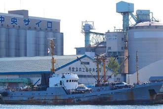 «Норт» было построено в 1983 году на судостроительном заводе имени Кирова в Хабаровске. Принадлежит южнокорейской компании Omor Trans Logitics SA. Водоизмещение — 495 т. Ходит под флагом Сьерра-Леоне