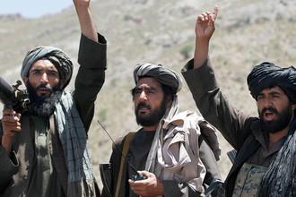 Боевики «Талибана» (запрещенная в России и ряде стран террористическая группировка) в афганской провинции Герат, 27 мая 2016 года