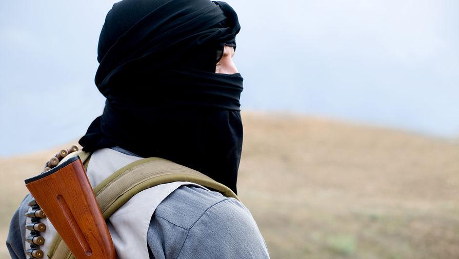 Талибы пообещали бороться с контрабандой наркотиков
