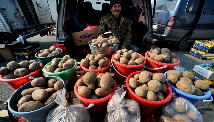 Борщ вне политики: почему Украина закупает картофель в России