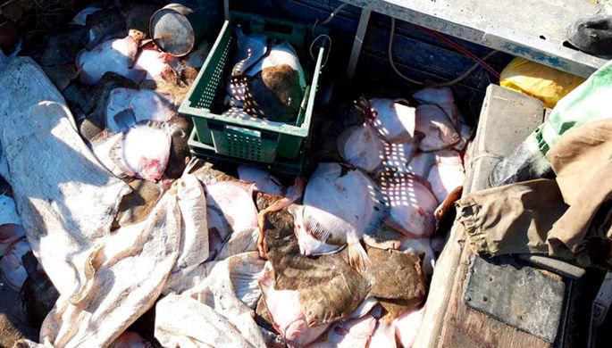 Азовское море: украинское судно задержали за браконьерство
