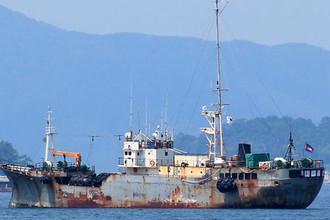 Судно «Вирт» построено в 1984 году в Японии, на заводе Niigata Engineering Co. Ltd. Принадлежит южнокорейской компании Gaya Investment SA. Водоизмещение — 468 т. Ходит под флагом Того