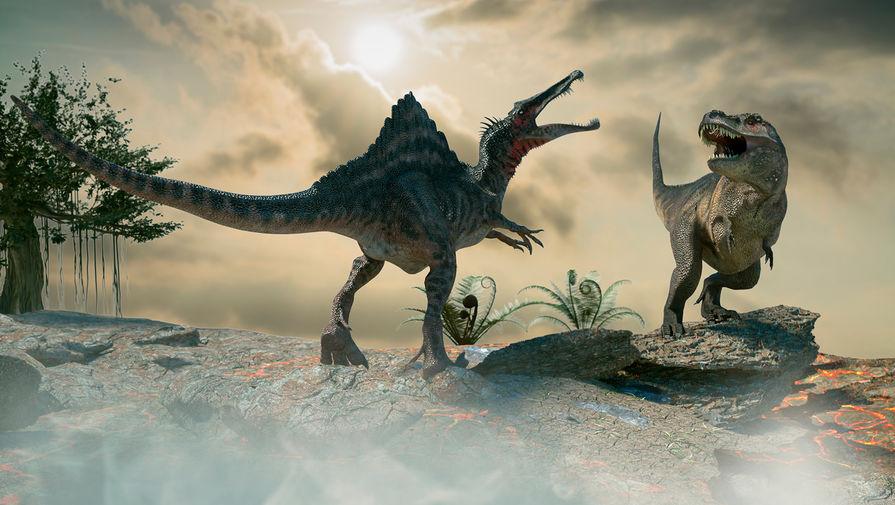 Ученые доказали, что динозавры гнездились в Арктике
