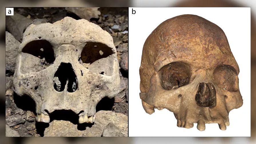 Археологи нашли в Габоне черепа беззубых африканцев