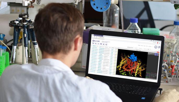 Создана база данных пептидов из ядов животных, действующих на калиевые каналы