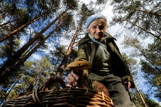 Будут нам ягодки: россиянам зарегулируют сбор грибов