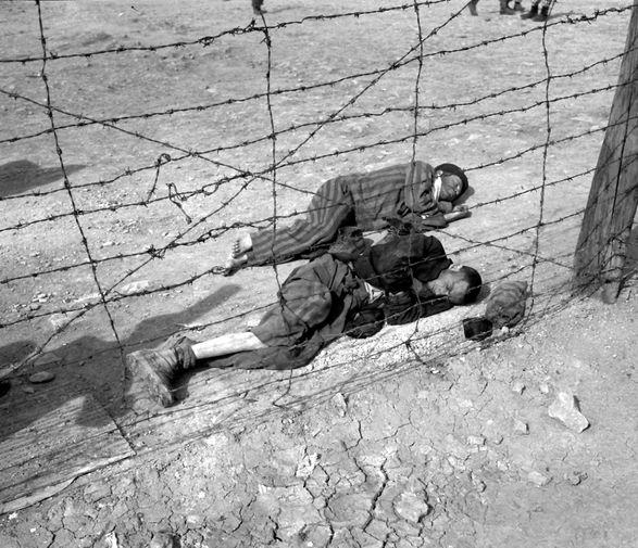 Истощенные узники концлагеря Бухенвальд, апрель 1945 года