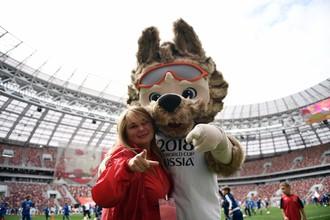Талисман футбольного чемпионата мира --2018 волк Забивака